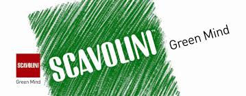 scavolini green mind